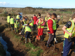 n celebration of Arbor Day/World Environment Day in early June, Gorge Road School pupils helped to plant red tussock around the car park at the Gravel Pit.