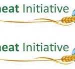 60% more wheat needed by 2050